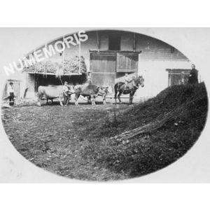 Massieu, hameau de Champe vers 1920