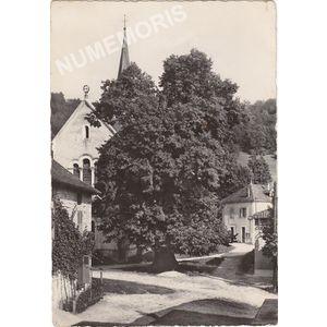 Saint-Aupre le tilleul datant de Sully