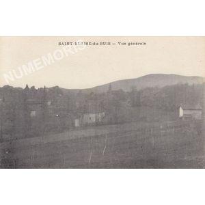 Saint-Blaise-du-Buis vue générale