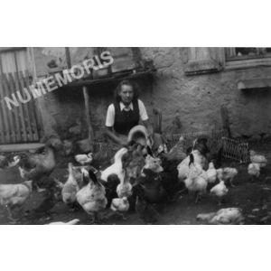 Chirens : basse-cour en 1955