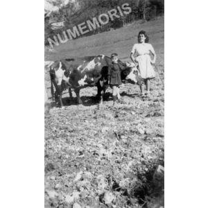 Chirens : labour à Beaudiné en 1945