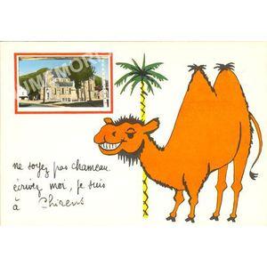 ne soyez pas chameau écrivez moi je suis à Chirens