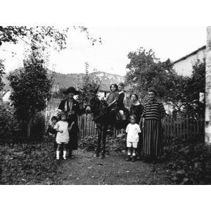 mulet à Coublevie
