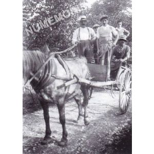 Bilieu : une voiture à cheval avec M. Truffier-Blanc coquetier