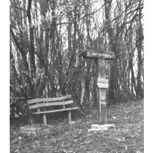 Bilieu : la croix des Cochettes autrefois
