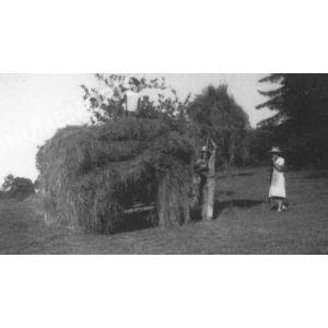 Bilieu : la fenaison à Raffet par la famille Penet
