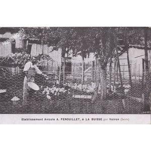Etablissement Avicole A. Fenouillet, à la Buisse par Voiron (Isère)