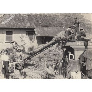 la batteuse de Montferrat à Fitilieu en 1954