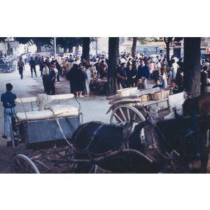 Saint Jean de Moirans : marché aux cerises