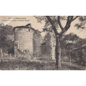 023 Tullins pittoresque Ruines d'un ancien Château féodal