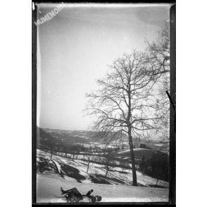 paysage de neige animée
