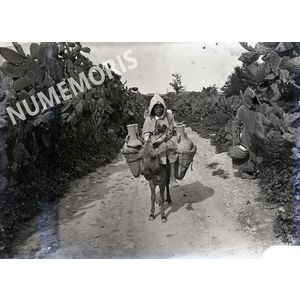 enfant sur un âne en Afrique du Nord ADG