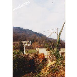 PP abattage arbre 4 1992 MJLR 001