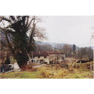 PP abattage arbre 1 1992 MJLR